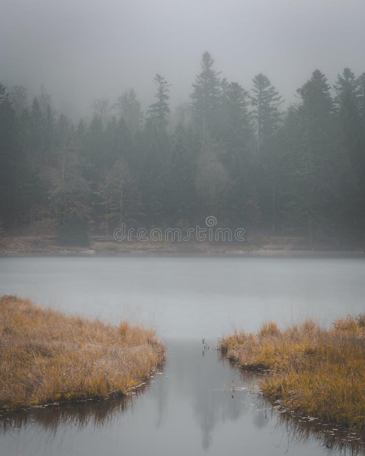 Ciemny mglisty wizerunek wodny prowadzić w jezioro obrazy royalty free