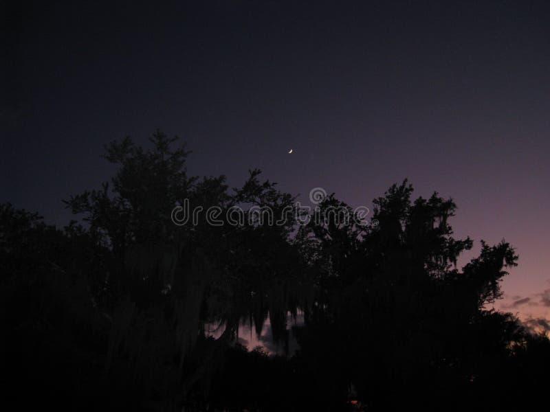 Ciemny zmierzch nad jeziorem zdjęcie royalty free