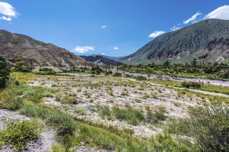 Cienaga Quebrada de Humahuaca, Jujuy, Argentina. fotografering för bildbyråer