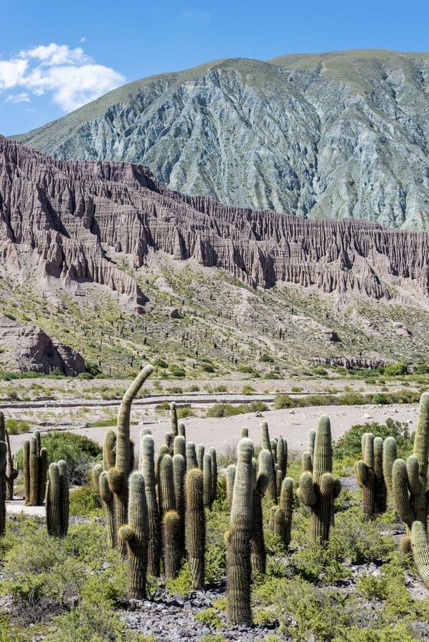 Cienaga, Quebrada de Humahuaca, Jujuy, la Argentina. imagen de archivo libre de regalías