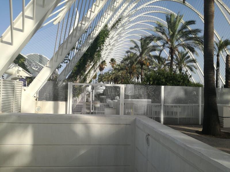 Ciencias Valencia för stadsartes y royaltyfria foton