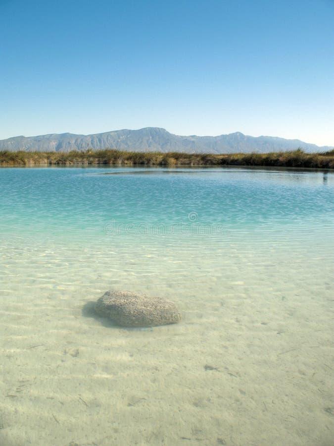 cienegas cuatro Mexico rafowy stromatolite zdjęcie stock