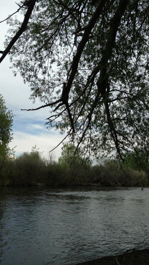 Cienie na rzece zdjęcie stock