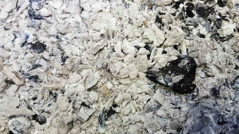Cienie popielaty popiółu tło z dużym czarnym kawałkiem palący węgiel drzewny Przypalająca łupki tekstura po drewnianego ogniska w fotografia royalty free