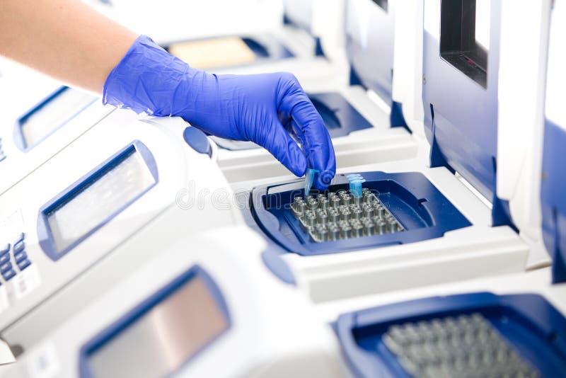 Científico con el copiado de la DNA, fotografía de archivo