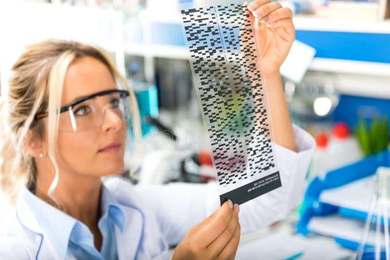 Científico de sexo femenino atractivo joven que examina el autoradiogram de la DNA con referencia a fotografía de archivo