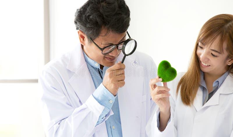 Científico de sexo masculino que lleva a cabo una lupa y un corazón verde en ella fotos de archivo