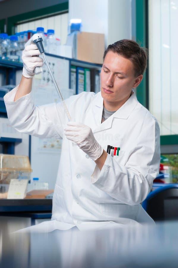 Científico en el trabajo imagen de archivo