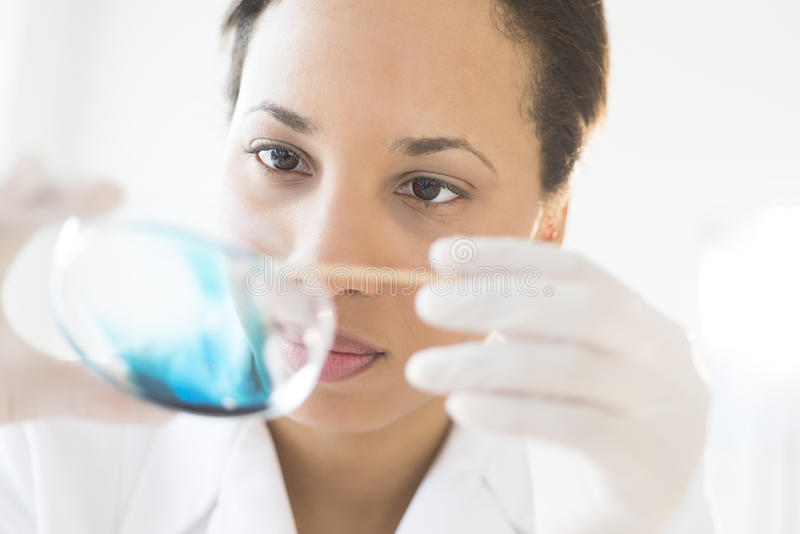 Científico Examining Solution In Petri Dish At Laboratory foto de archivo