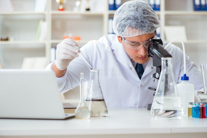 Científico joven del investigador que hace un expe de la contaminación de la prueba de agua imágenes de archivo libres de regalías