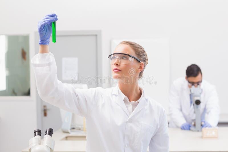 Científico que examina el precipitado verde en tubo imagen de archivo libre de regalías