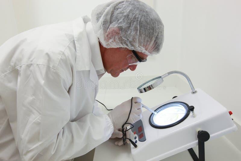 Científico que hace el análisis técnico y químico del maíz y del soyb foto de archivo libre de regalías