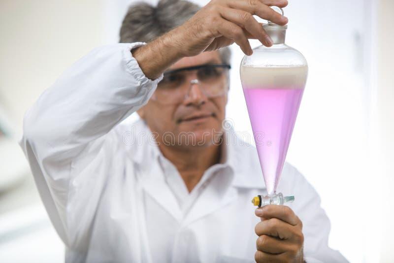 Científico que hace el análisis técnico y químico del maíz y del soyb fotos de archivo