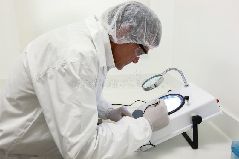Científico que hace el análisis técnico y químico del maíz y del soyb imagen de archivo libre de regalías