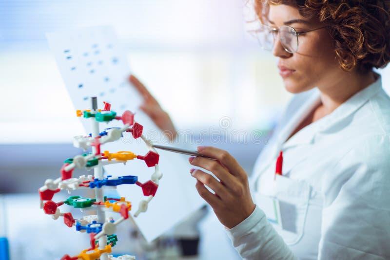 Científico que mira la DNA fotos de archivo libres de regalías