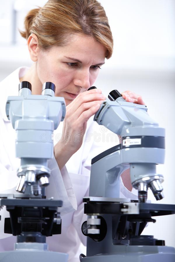 Científico que trabaja con el microscopio fotografía de archivo libre de regalías