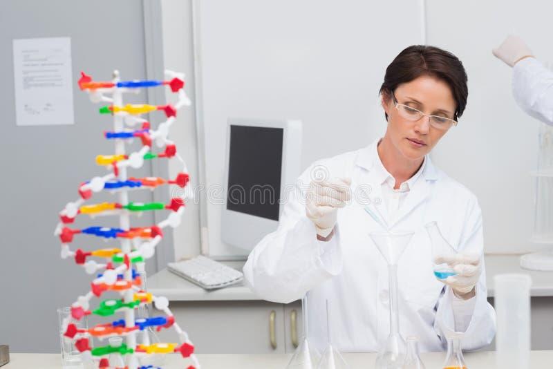 Científico que vierte el líquido químico en embudo foto de archivo libre de regalías