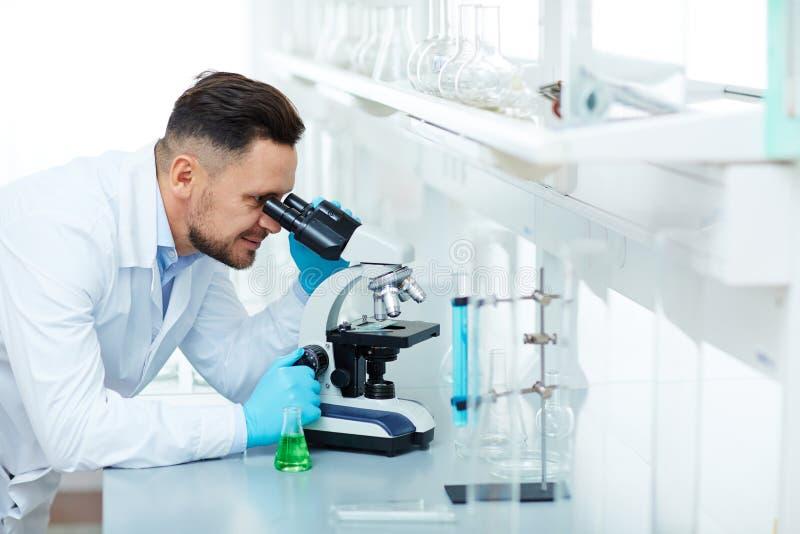 Científico sonriente Working en la investigación en laboratorio imagen de archivo