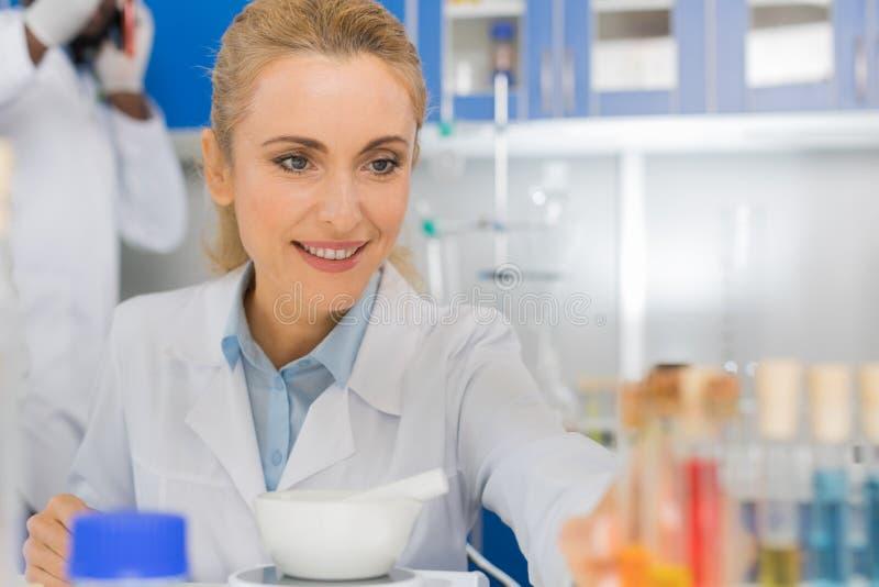 Científico Working In Laboratory de la mujer que hace Exrepiment, investigador de sexo femenino In Lab fotografía de archivo libre de regalías