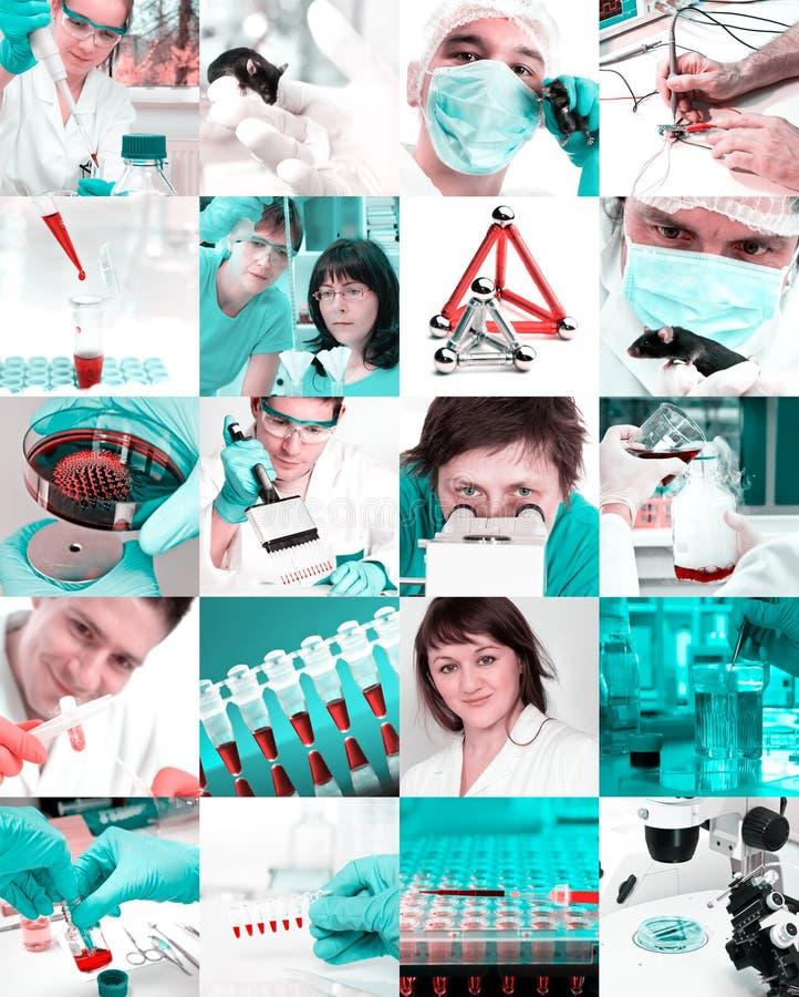 Científicos en el laboratorio, collage imagen de archivo