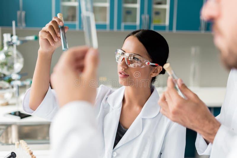 Científicos en las capas blancas que examinan los tubos de ensayo con los reactivo en laboratorio químico foto de archivo