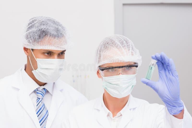 Científicos que examinan el precipitado verde en tubo foto de archivo