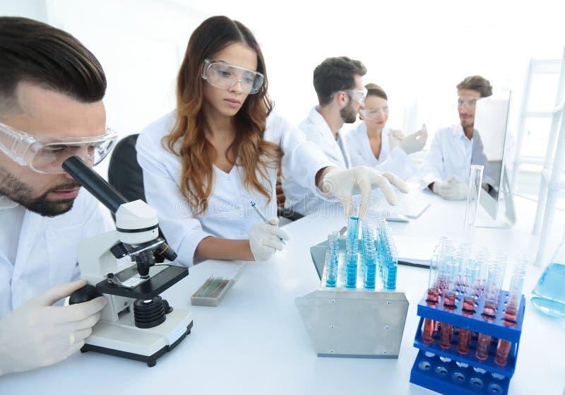 Científicos que examinan en el laboratorio con los tubos de ensayo imagen de archivo