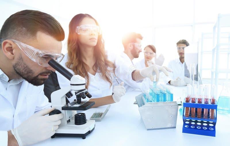 Científicos que examinan en el laboratorio con los tubos de ensayo foto de archivo libre de regalías