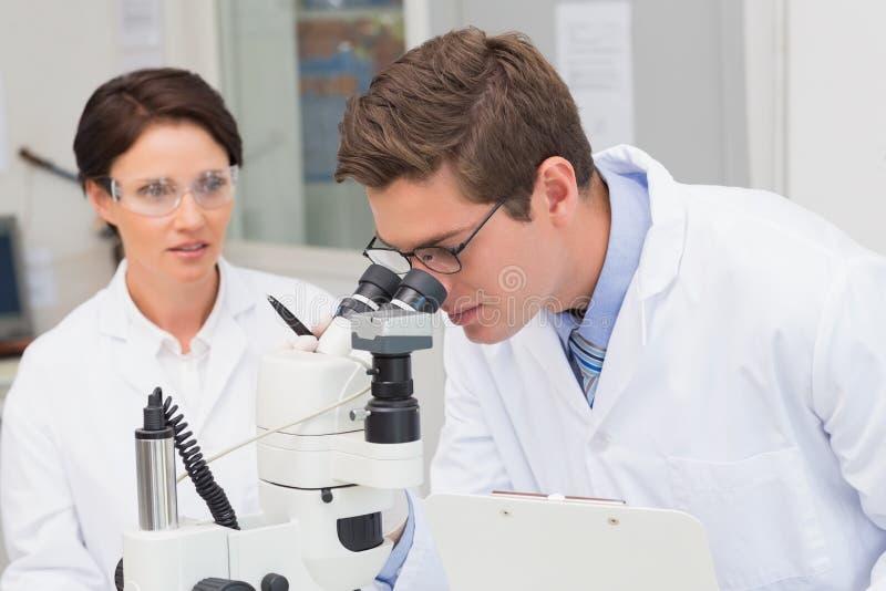 Científicos que miran atento en microscopio foto de archivo