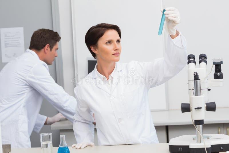 Científicos que trabajan atento con el tubo de ensayo y el ordenador fotografía de archivo libre de regalías