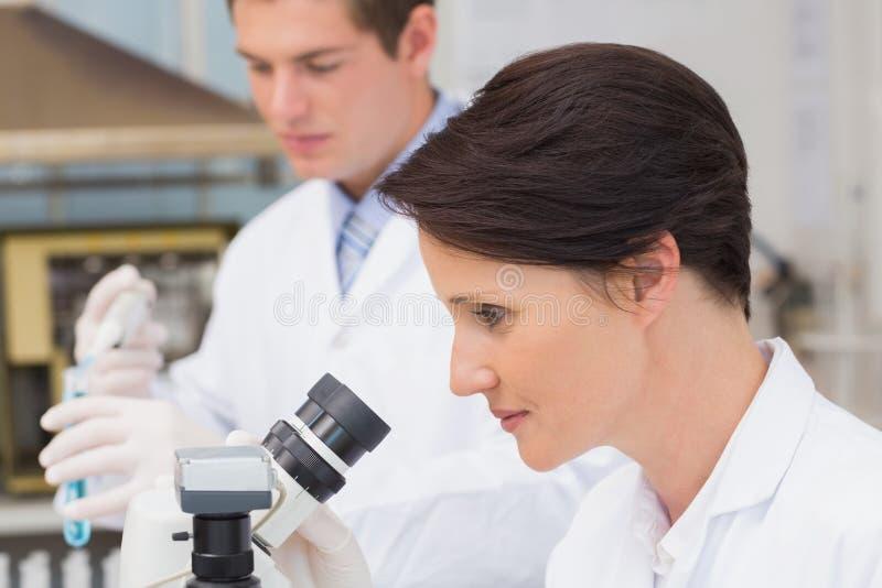 Científicos que trabajan con el microscopio y el tubo de ensayo fotografía de archivo