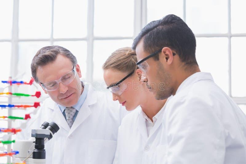 Científicos que trabajan junto imagenes de archivo