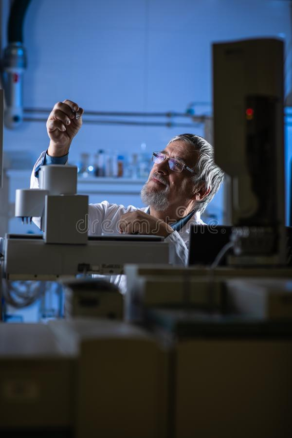 Cient?fico mayor en una investigaci?n de realizaci?n del laboratorio de qu?mica - mirada de muestras de la cromatograf?a de gas fotografía de archivo libre de regalías