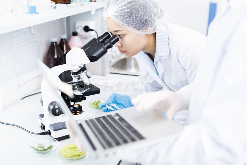 Cientista asiático Using Microscope foto de stock royalty free