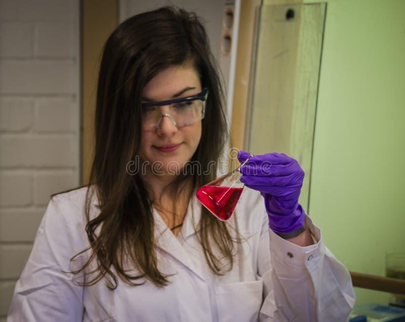 Cientista bonito da mulher que guarda e que investiga uma solução vermelha no laboratório de química para a ciência e a pesq fotografia de stock royalty free