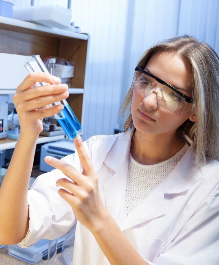 Cientista com o laboratório de ciência do tubo de ensaio fotos de stock