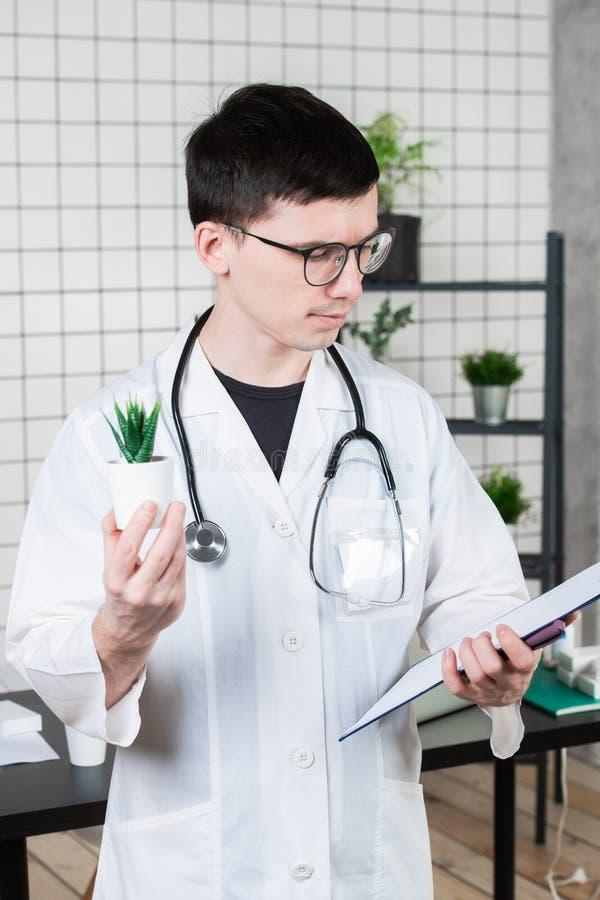 Cientista Conducts Experiments com uma planta verde foto de stock