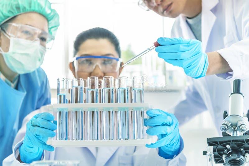 Cientista da equipe que trabalha no laboratório Tubos de ensaio com líquido no laboratório, conta-gotas da terra arrendada da mão imagens de stock