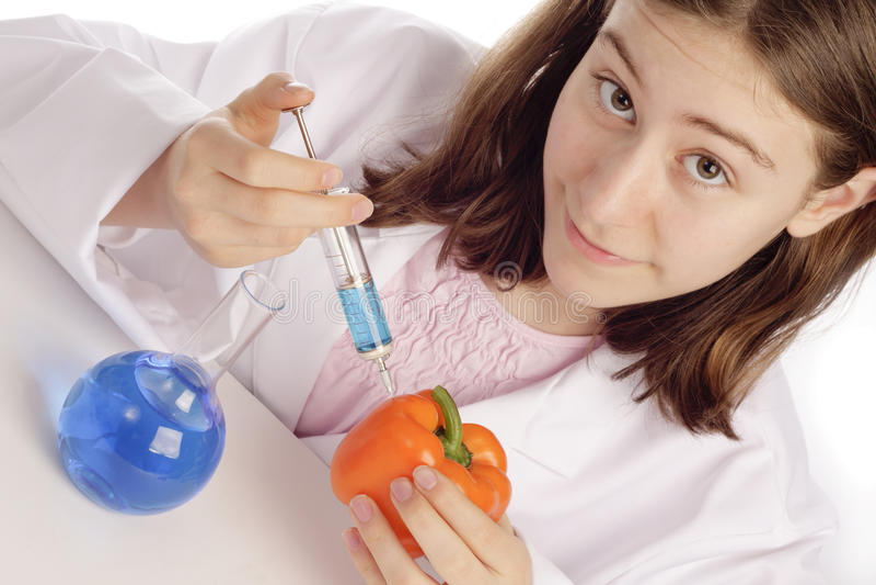 Cientista fêmea novo que injeta uma pimenta alaranjada foto de stock
