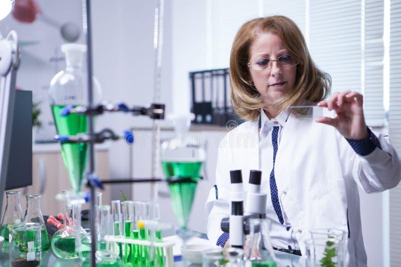 Cientista fêmea que trabalha fazendo a análise química em uma amostra em um laboratório foto de stock