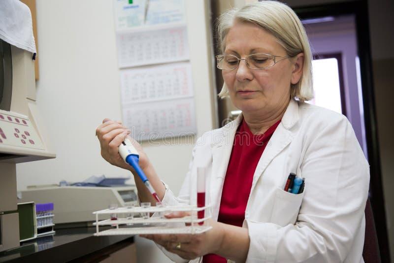 Cientista fêmea sênior que trabalha no laboratório fotografia de stock royalty free