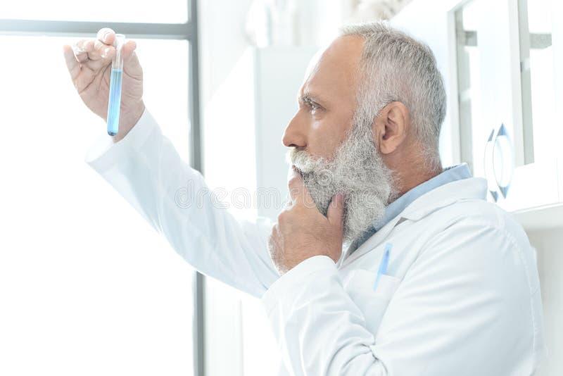 Cientista farpado no revestimento branco que pensa e que olha o tubo com o reagente no laboratório químico imagem de stock