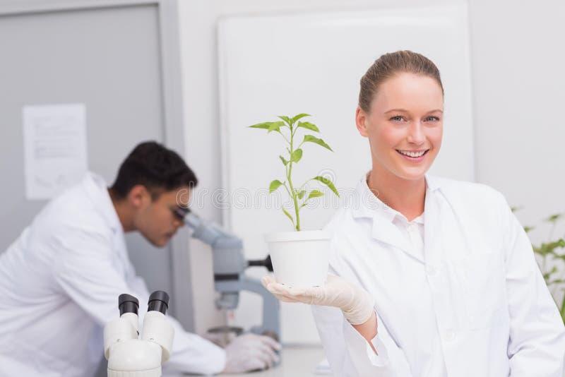 Cientista feliz que sorri na câmera que mostra a planta fotografia de stock royalty free