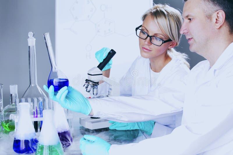 Cientista no laboratório químico fotos de stock royalty free