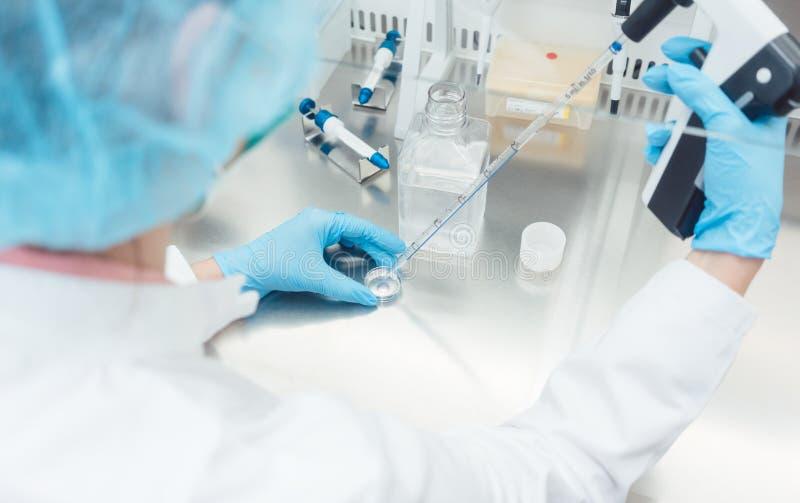 Cientista no laboratório que conduz a experiência biotecnológica imagens de stock
