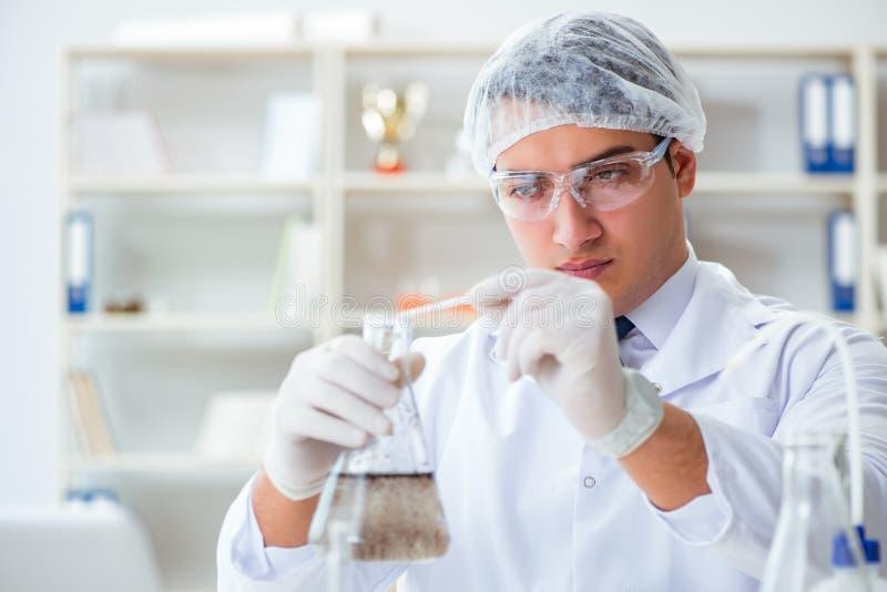 Cientista novo do pesquisador que faz um expe da contaminação do teste de água imagem de stock royalty free