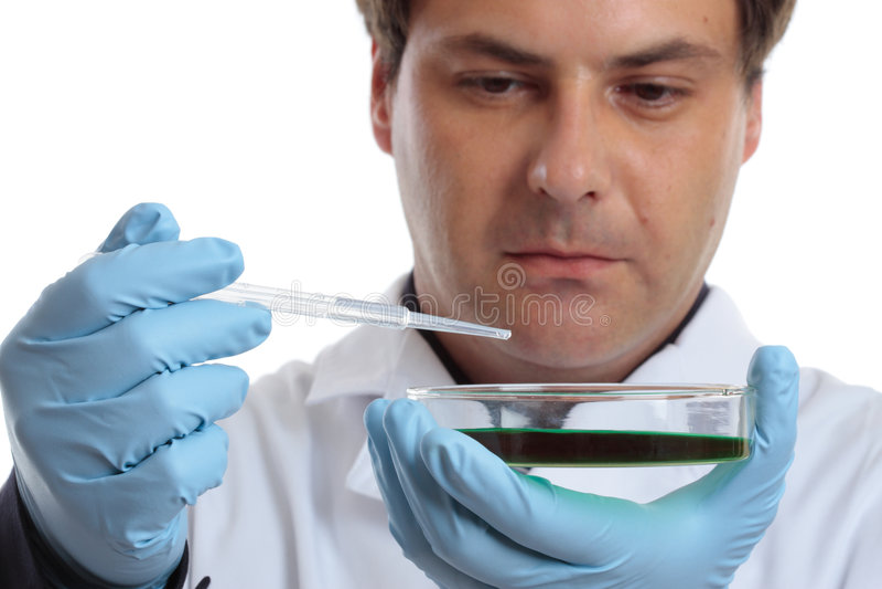 Cientista ou químico com prato de petri fotografia de stock