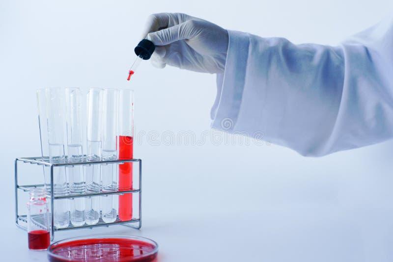 Cientista que trabalha na análise de sangue no laboratório Fundo da ciência foto de stock