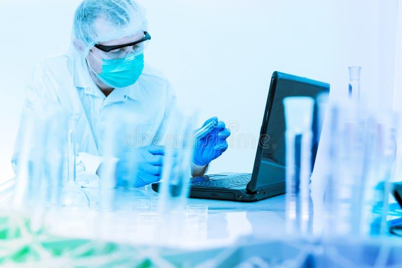 Cientista que trabalha no laboratório. fotografia de stock royalty free