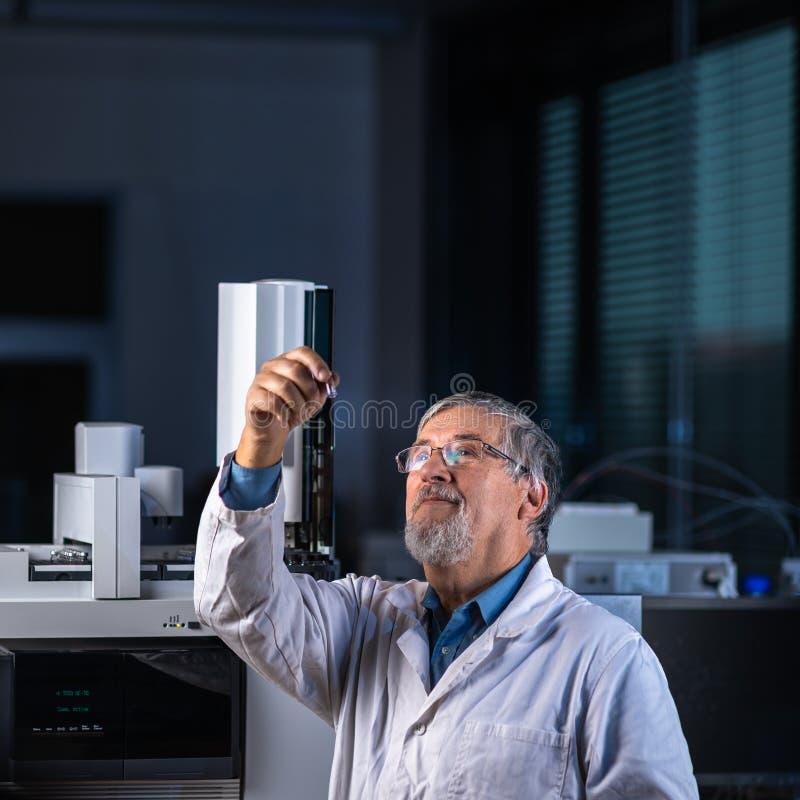 Cientista superior em uma pesquisa de execu??o do laborat?rio de qu?mica - olhando amostras da cromatografia de g?s fotografia de stock